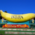 Thumbnail image for Big Banana, Coffs Harbour