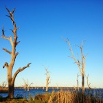 Another day of sunshine, Lake Mulwala