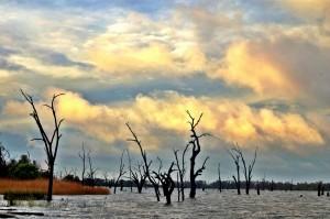 Sunrise, Lake Mulwala